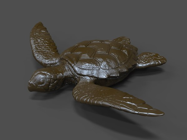 3D turtle statue print