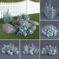 silver wormwood artemisia ludovicana 3D model