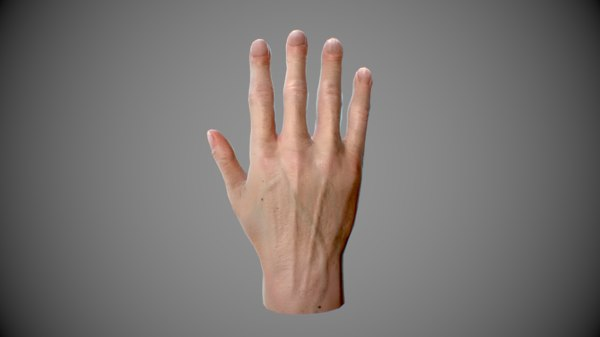 realistic male hand rigged model