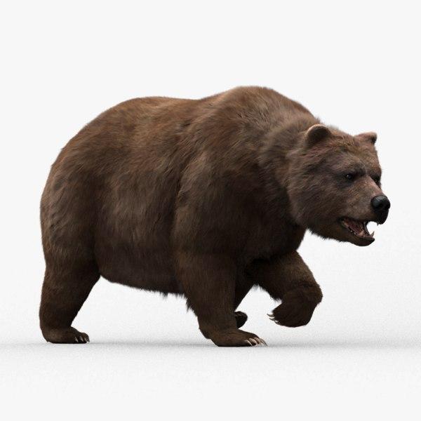 3D model bear fur hair animation