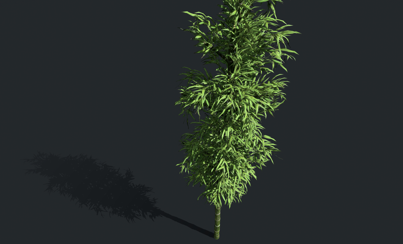 3D tree nature forest