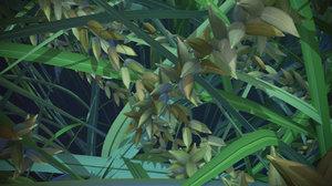 rice plant model