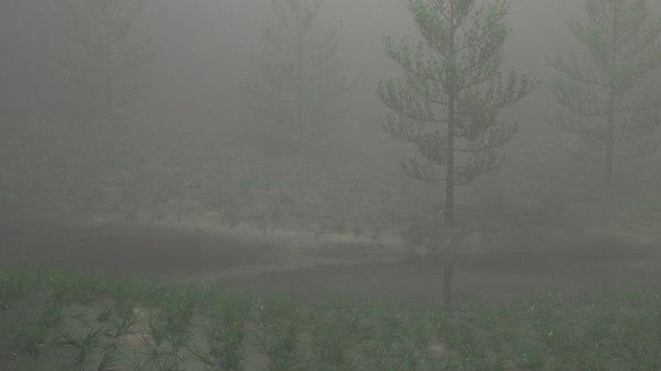 misty nature model