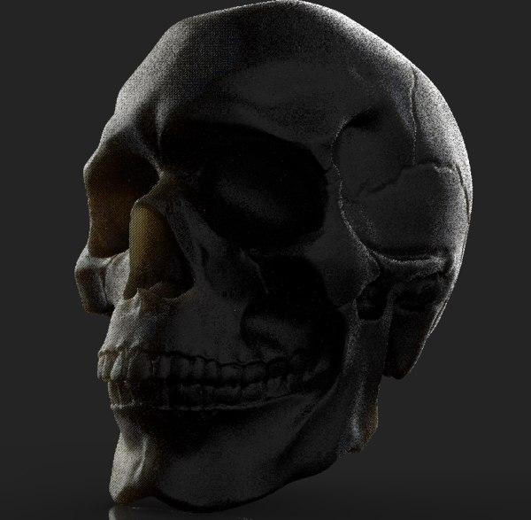base anatomy skull 3D model