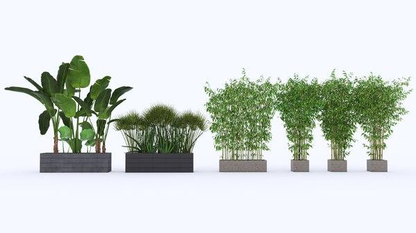set plants 3D