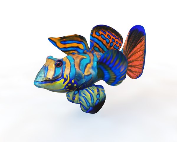 3D goby fish model