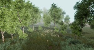 3D trees birch forests unity model