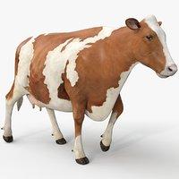3D cow ayrshire