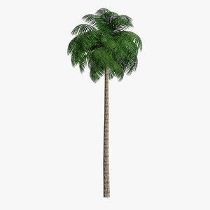 3D model unreal palm leaf