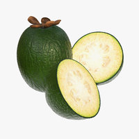 feijoa tropical fruit 3D model
