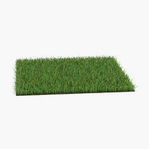 3D grass lawn plant