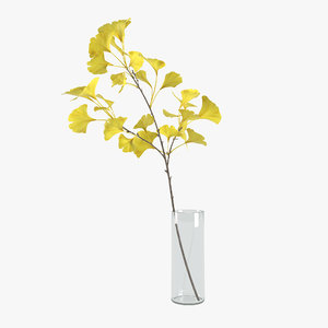 yellow ginkgo 3D model