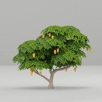 3D mango tree model