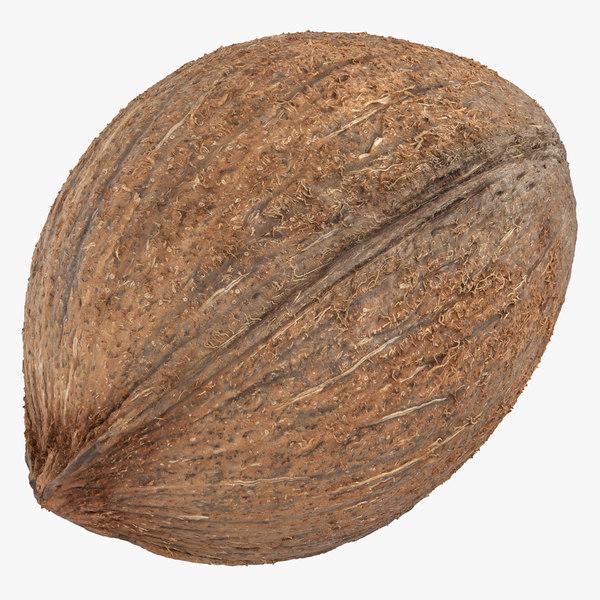 coconut 04 3D model