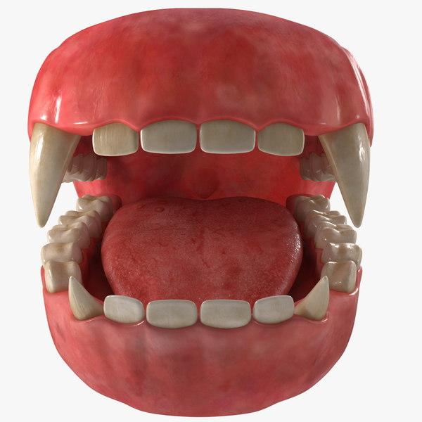 creature jaw dentition 3D model