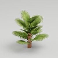 Fan Palm Tree G12