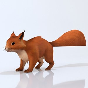 3D squirrel animal