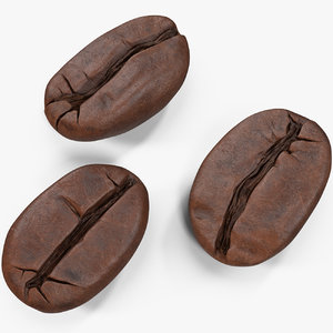 coffee beans roasted 2 3D