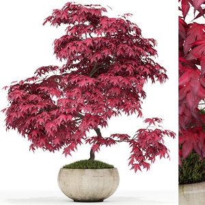 3D plants 164 model