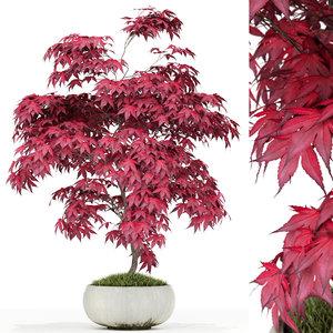 plants 165 3D model
