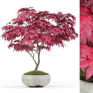 3D plants 166