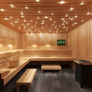 3D sauna room interior