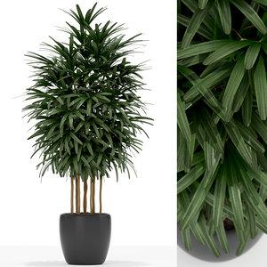 3D model plants 171