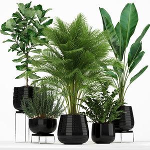 plants 180 model