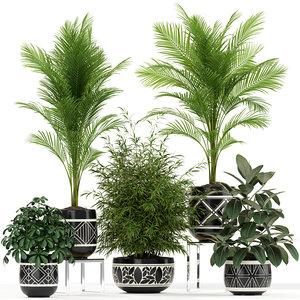 plants 181 3D model