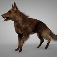 3D model solid liver german shepherd