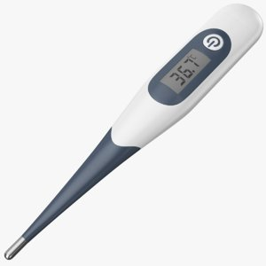 real thermometer 3D model