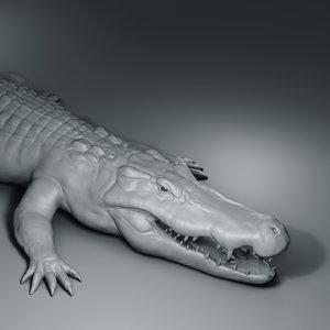 3D crocodile basemesh