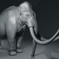 Mammoth basemesh