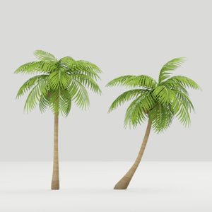 coconut tree model