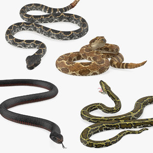 rigged snakes 2 3D