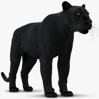 3D black panther leopard fur