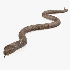 beige cobra snake crawling 3D
