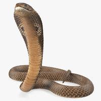 3D model cobra beige skin alert