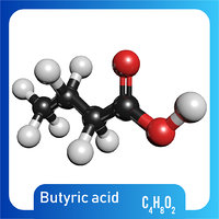 3D c4h8o2 butyric acid model
