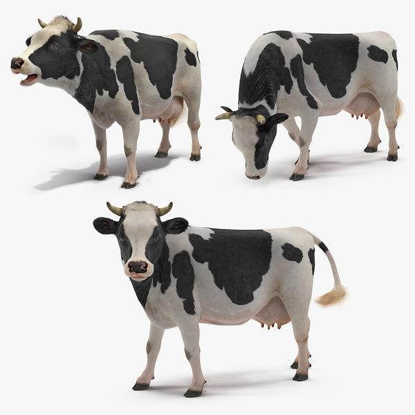3D cow farm animal model