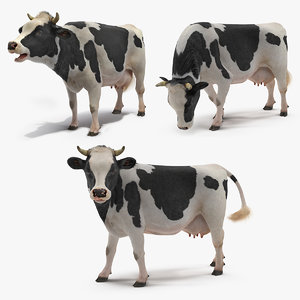 3D cow farm animal model