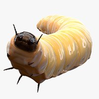 realistic maggot pose 3D model