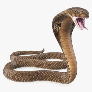 3D model beige cobra attack pose