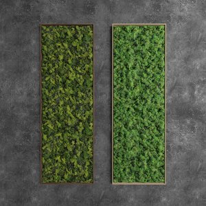 3D decorative moss