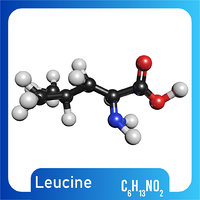 c6h13no2 molecule leucine 3D model