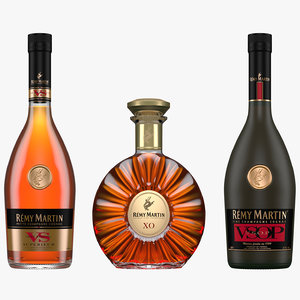 remy martin cognac bottles 3D model