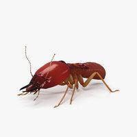 3D termite hd model