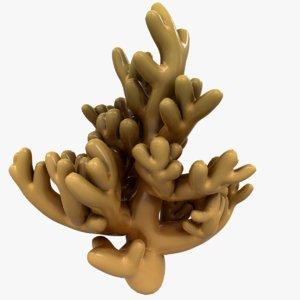 modeled coral 3D
