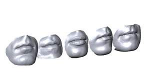 scanned mouths 3D