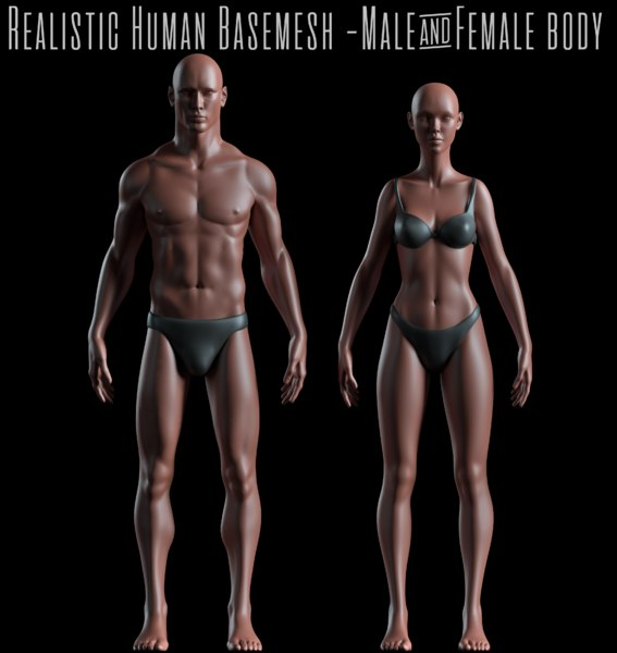 3D male female basemeshes realistic